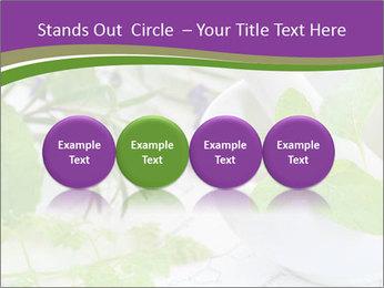 0000081652 PowerPoint Templates - Slide 76