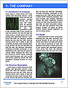 0000081653 Word Template - Page 3
