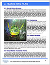 0000081653 Word Template - Page 8