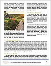 0000081656 Word Template - Page 4