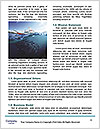 0000081663 Word Templates - Page 4