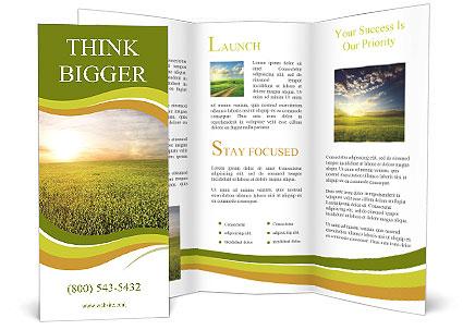 0000081664 Brochure Template