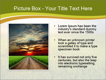0000081664 PowerPoint Template - Slide 13