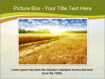 0000081664 PowerPoint Template - Slide 16