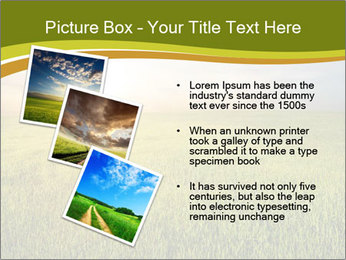 0000081664 PowerPoint Template - Slide 17