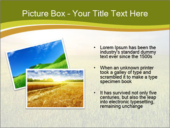 0000081664 PowerPoint Template - Slide 20