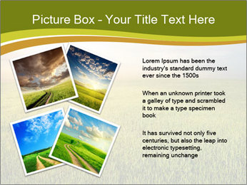 0000081664 PowerPoint Template - Slide 23