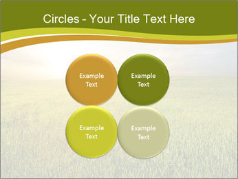 0000081664 PowerPoint Templates - Slide 38