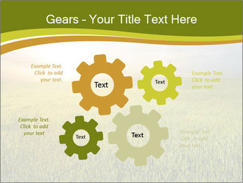 0000081664 PowerPoint Templates - Slide 47