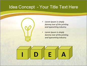 0000081664 PowerPoint Template - Slide 80