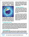0000081665 Word Templates - Page 4