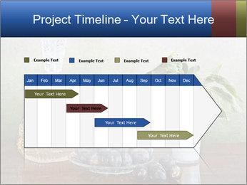 0000081671 PowerPoint Template - Slide 25