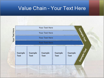 0000081671 PowerPoint Template - Slide 27