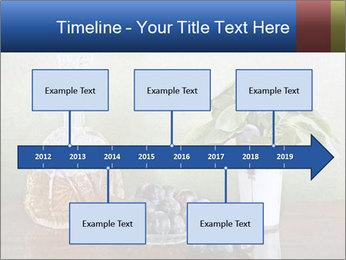 0000081671 PowerPoint Template - Slide 28