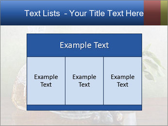 0000081671 PowerPoint Templates - Slide 59