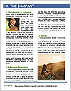 0000081674 Word Templates - Page 3