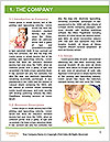 0000081675 Word Template - Page 3
