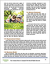 0000081683 Word Template - Page 4