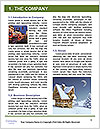 0000081685 Word Template - Page 3