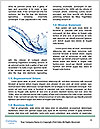 0000081689 Word Templates - Page 4