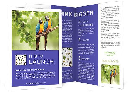 0000081691 Brochure Templates