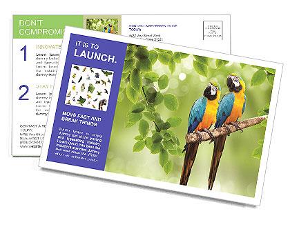 0000081691 Postcard Template