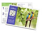 0000081691 Postcard Templates