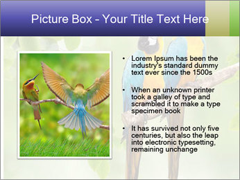 0000081691 PowerPoint Template - Slide 13