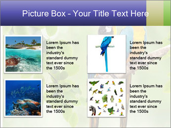0000081691 PowerPoint Template - Slide 14