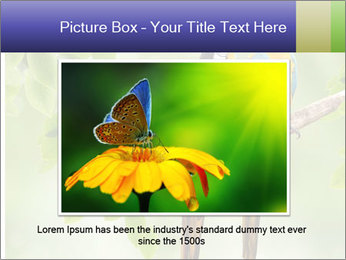 0000081691 PowerPoint Template - Slide 15
