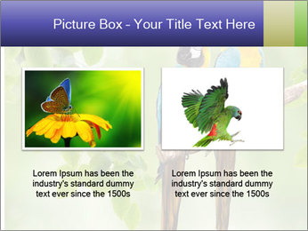 0000081691 PowerPoint Template - Slide 18
