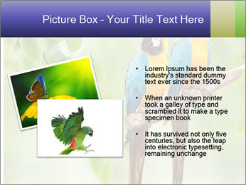 0000081691 PowerPoint Template - Slide 20