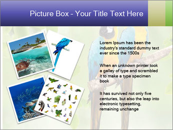 0000081691 PowerPoint Template - Slide 23