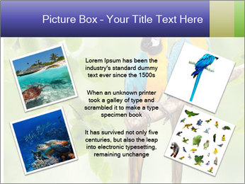 0000081691 PowerPoint Template - Slide 24