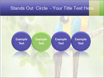 0000081691 PowerPoint Template - Slide 76