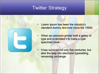 0000081691 PowerPoint Template - Slide 9