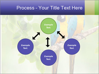 0000081691 PowerPoint Template - Slide 91