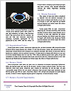 0000081694 Word Templates - Page 4