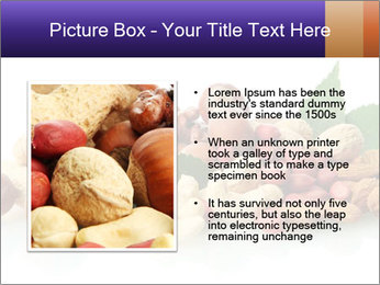 0000081697 PowerPoint Template - Slide 13