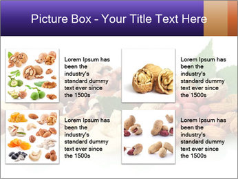0000081697 PowerPoint Template - Slide 14