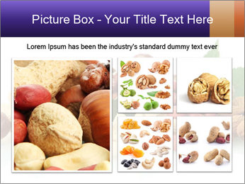 0000081697 PowerPoint Template - Slide 19