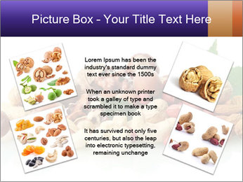 0000081697 PowerPoint Template - Slide 24
