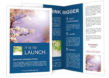 0000081699 Brochure Templates