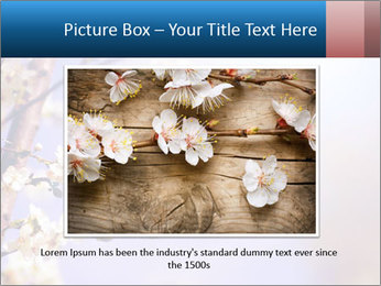 0000081699 PowerPoint Templates - Slide 15