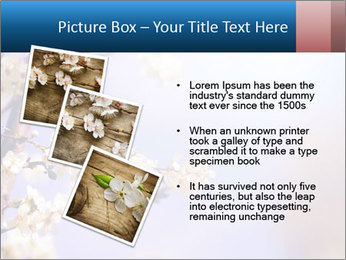 0000081699 PowerPoint Templates - Slide 17