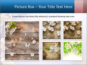 0000081699 PowerPoint Templates - Slide 19