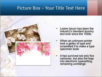 0000081699 PowerPoint Templates - Slide 20