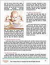 0000081704 Word Templates - Page 4