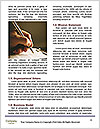 0000081706 Word Templates - Page 4