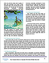 0000081707 Word Templates - Page 4